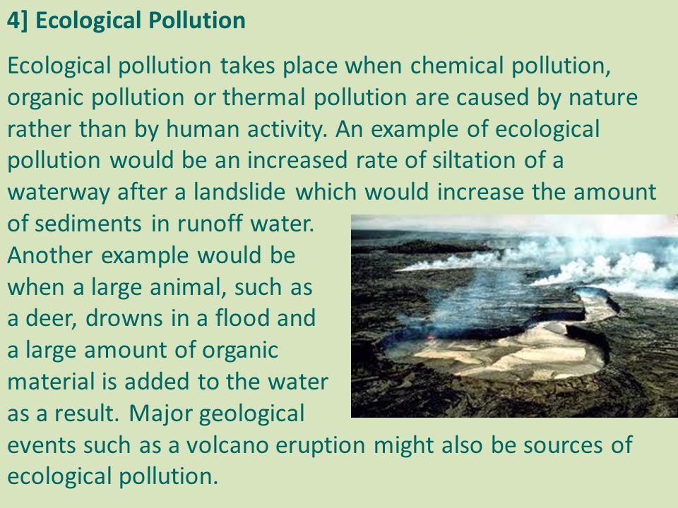 4] Ecological Pollution